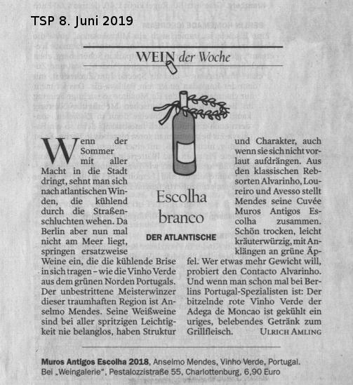 Tagesspiegel_20190608